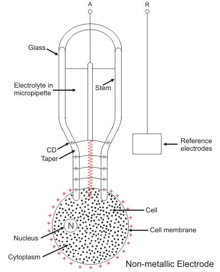 non metal microelectrode