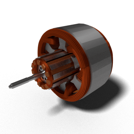 Squirrel Cage Type Induction Motor
