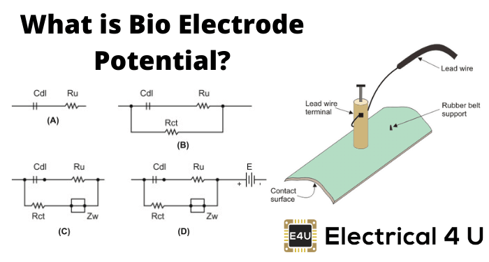What Is Bio Electrode Potential