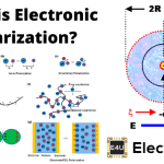 Electronic Polarization