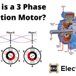 Three Phase Induction Motor Definition & Working Principle