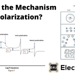 Mechanism of Polarization